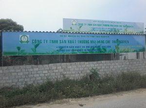 Tuyển đại lý độc quyền công ty làng chè thái nguyên