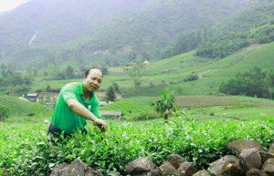 Người làm trà tử tế và câu chuyện trà bẩn