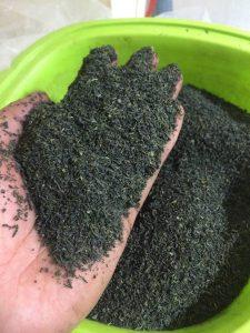 Tổng kho giá sỉ trà tấm,cám thái nguyên tại Hà Nội