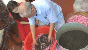 Tại sao chọn trà ngon Thái Nguyên đem ướp sen Tây Hồ ?