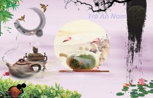 Trà An Nam-Thái Nguyên Loại nào ngon nhất