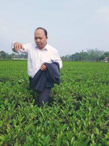 Tìm đâu vị trà truyền thống Thái Nguyên